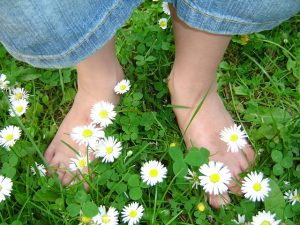 daisy_feet